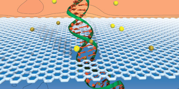 Graphic of DNA sequencing by graphene nanopores
