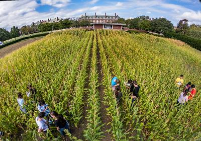 The historic Morrow Plots, with a building in the background and students working in the field.