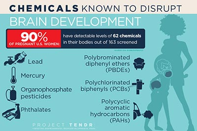 Chemicals Known to Disrupt Brain Development