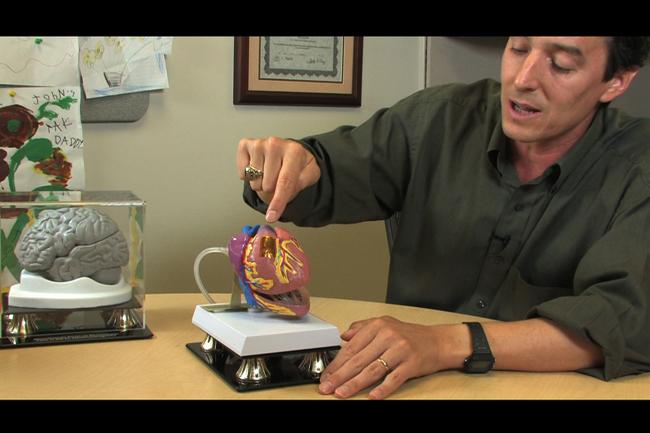 membrana corazón impresa 3D