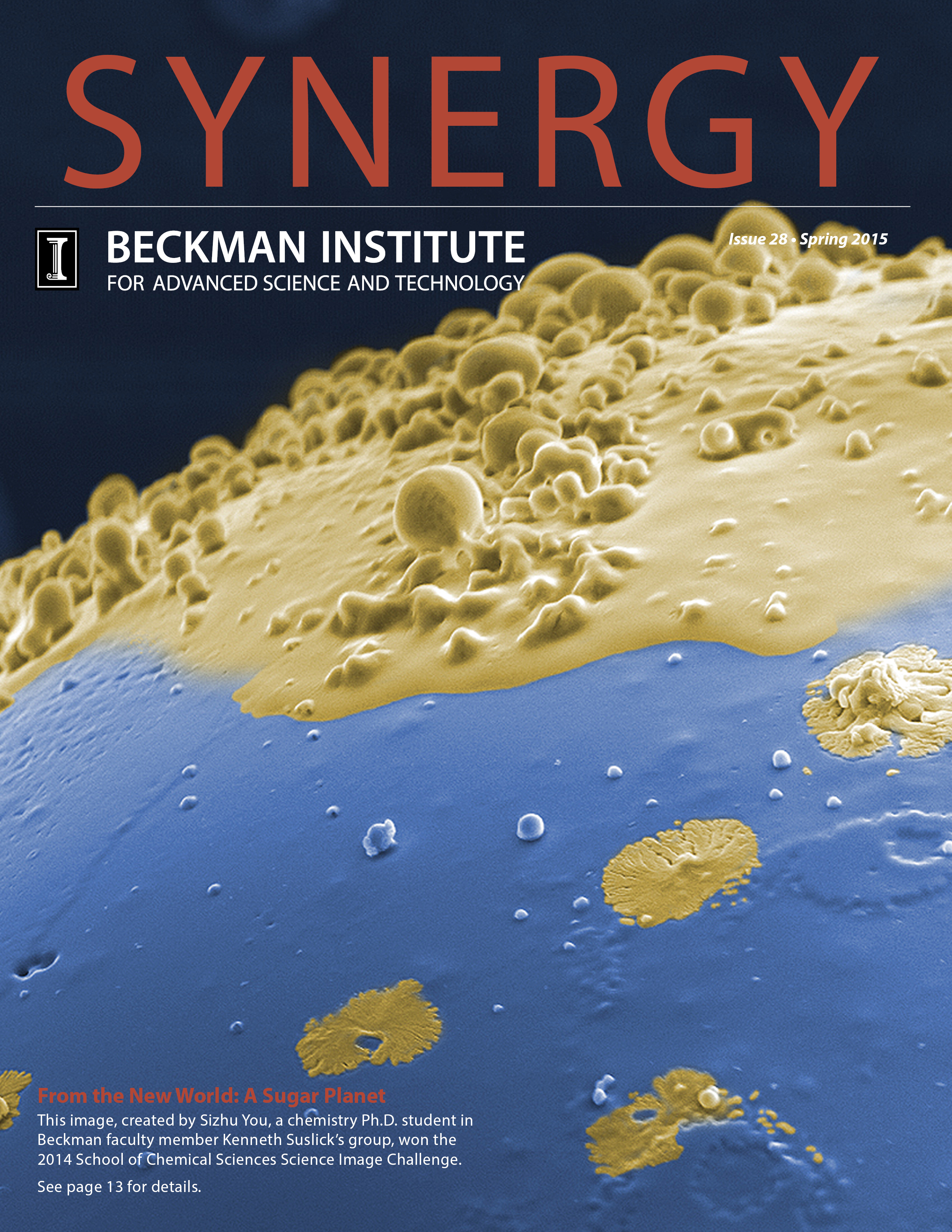 Cover of Spring 2015 Synergy Issue