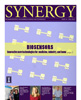 Cover of Fall 2010 Synergy Issue