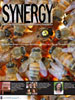 Cover of Summer 2007 Synergy Issue