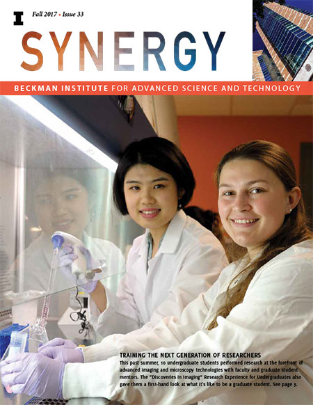 Cover of Fall 2017 Synergy Issue