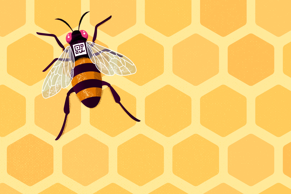 illustration of a bee on a honeycomb