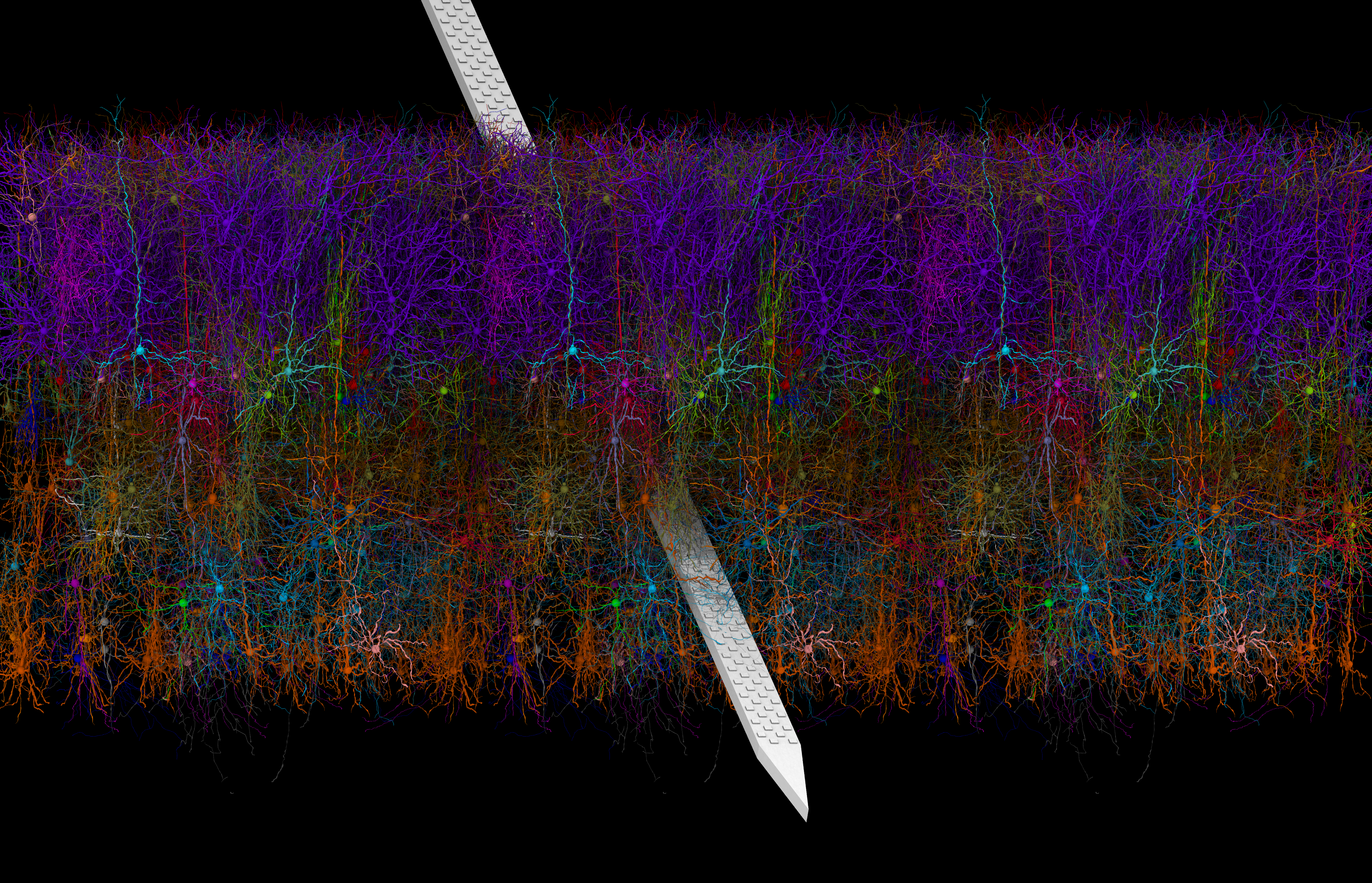 Image depicts a biorealistic, 3D visualization of the primary visual cortex in a mouse brain using Visual Neuronal Dynamics software.