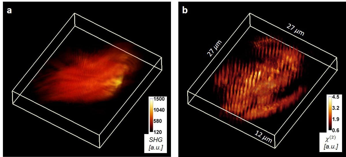 Harmonic Optical Tomography: 3D imaging goes an octave higher